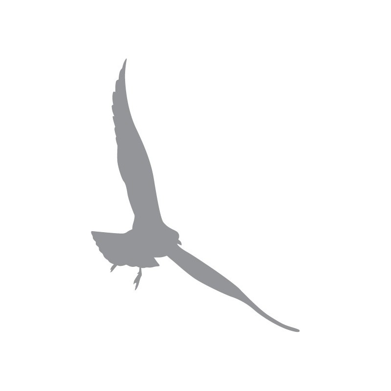 Sticker d coratif d 39 un oiseau en vol dans un virage - Dessin oiseau en vol ...