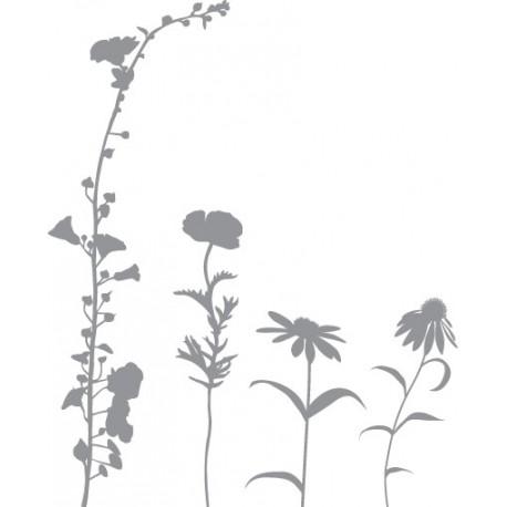 Plaquette de 4 fleurs distinctes