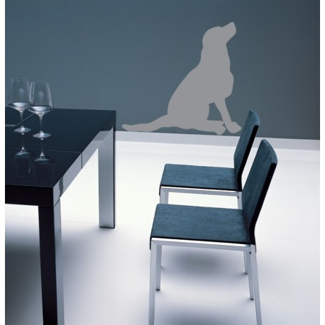 sticker d coratif d 39 un chien assis regardant dans les airs fort effet trompe l 39 oeil. Black Bedroom Furniture Sets. Home Design Ideas