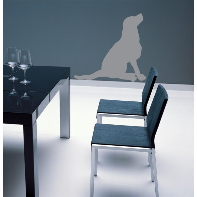 sticker d coratif d 39 un chien assis regardant dans les airs fort effet trompe l 39 oeil. Black Bedroom Furniture Sets. Home Design Ideas