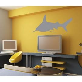 Requin chercheur en situtation